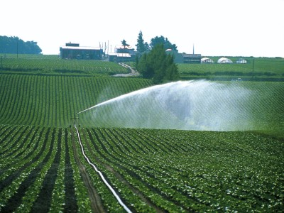 Bauer Irrigation Equipmet For Sale UK