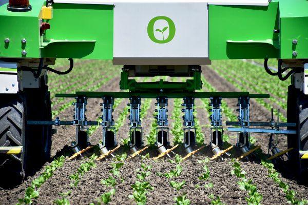 The Burdens Group Naio Technologies DINO vegetable weeding robot