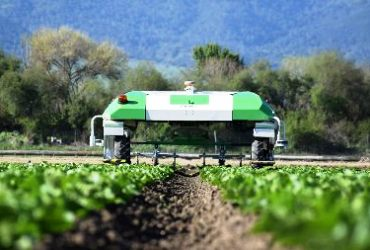 New Vegetable Machinery Franchise Naio Technologies